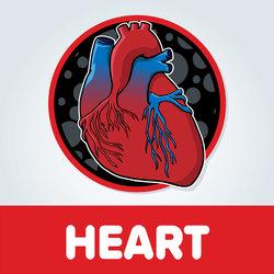 Heart Artwork