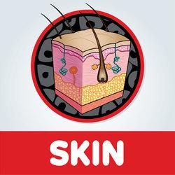 Skin Artwork